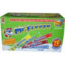 Mr.Freeze Génorme 150ml Carton de 70 pièces