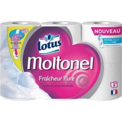 Lotus Moltonel Fraîcheur Pure 6 Rouleaux (lot de 3)
