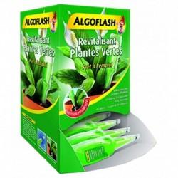 Algoflash Revitalisant Plantes Vertes Unidose Prête à l'emploi (lot de 10)
