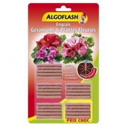 Algoflash Engrais Géraniums et Plantes Fleuries Diffusion Progressive 25 bâtonnets (lot de 3 soit 75 bâtonnets)